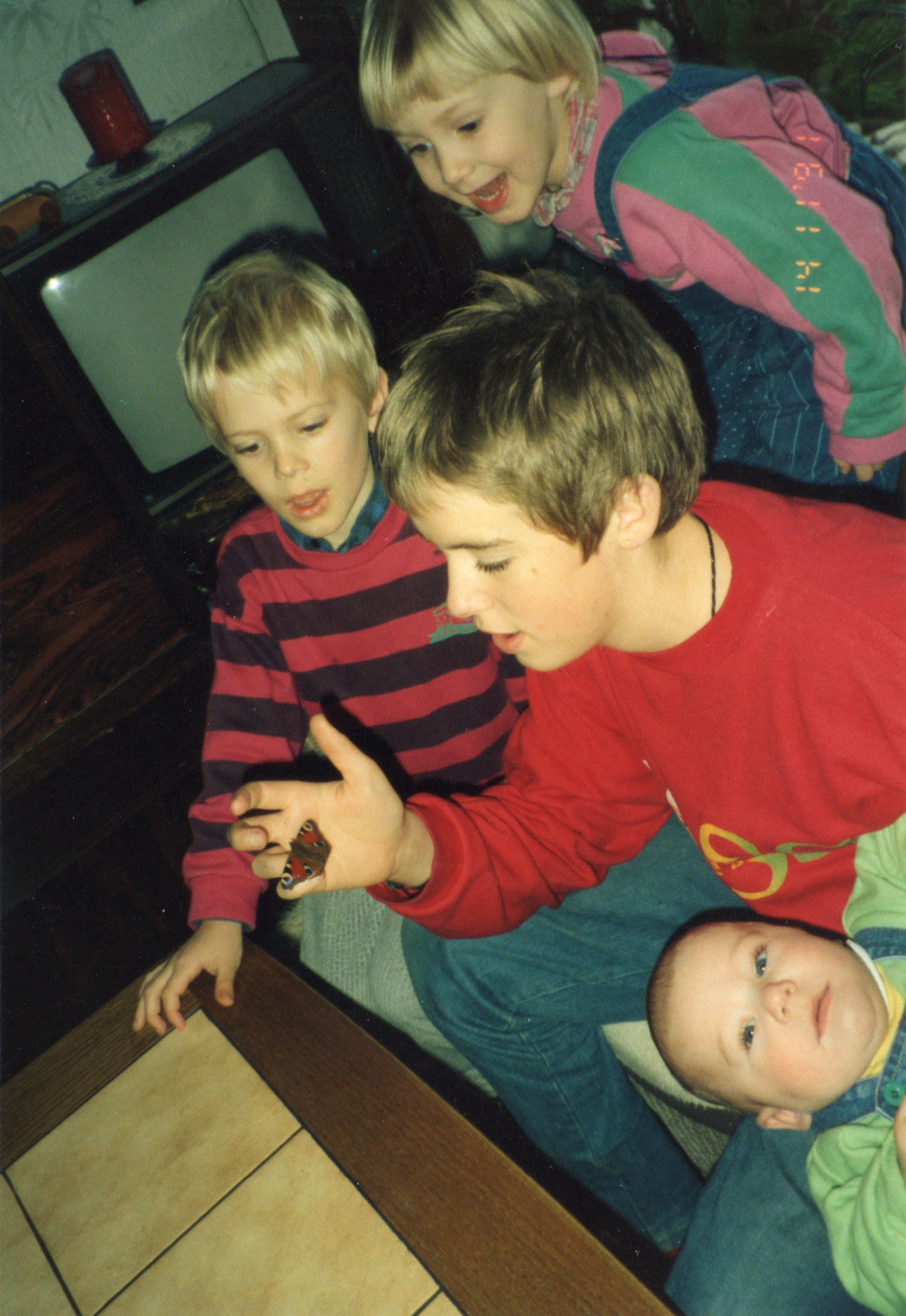 Ich (ganz oben) mit drei meiner vier Geschwister. Ich habe mich schon immer für alles Lebendige begeistert.