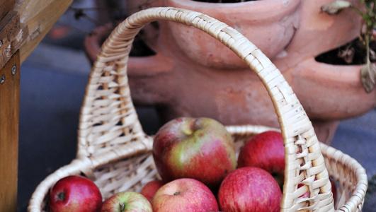 Gesund ernähren bei niedrigem Einkommen